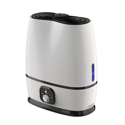 Everlasting Comfort Cool Mist Humidifier Review